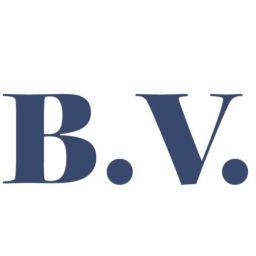 logotipo_BV-01